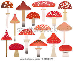 vector flat style vector forest mushrooms stock vector 639070372
