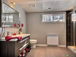 Basement Bathroom Ideas Pictures Best Basement Bathroom Ideas New Home Design Adding Basement