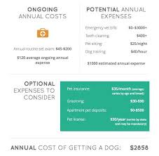 cost of a bichon frise what u0027s the true cost of owning a dog and how to cut costs