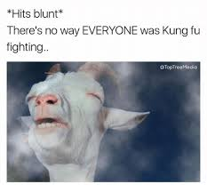 Fu Memes - hits blunt there s no way everyone was kung fu fighting