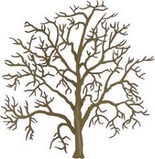 learn the basics of drawing trees in this free class presented by