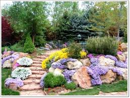 Rock Gardens Designs Small Rockery Garden Backyard Path Decorating With Small Rocks