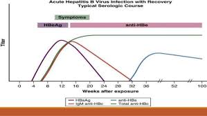 symptoms of hbv light colored stool hepatitis b diagnosis and management an update