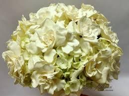 de 90 bästa in the gardenia flower u0027s garden bilderna på pinterest