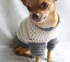 chihuahua sweaters chihuahua sweaters dress the clothes for your pets