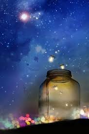 magical night wallpapers 72 best light my world fireflies images on pinterest good