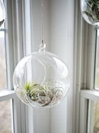 chic and space saving ways to add greenery to your home u2014 creative