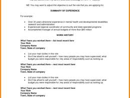 example it resume summary 10 sample it resume objective 4 career objective sample for cv