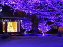the 25 best purple lights ideas on purple