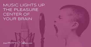 light up your brain music lights up the pleasure center of your brain