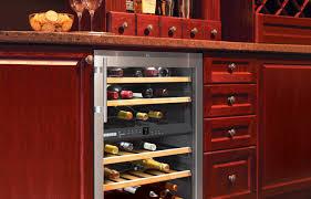 Kitchen Bar Cabinet Ideas Cabinet Mini Refrigerator Wood Cabinet Beautiful Under Cabinet