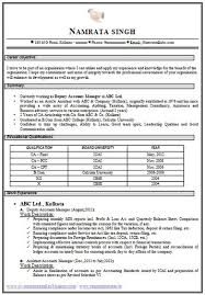 chartered accountant resume career page 6 scoop it