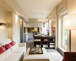 narrow living room design ideas narrow living room houzz