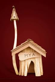 Goat Home Decor Images About Guinea Pig Ideas On Pinterest Pigs House And Chicken
