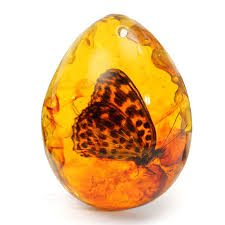 amber stone necklace images Resin amber butterfly insect stone pendant necklace gifts 4 x 2 x jpg