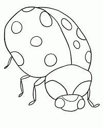 insect coloring coloring