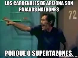 Memes De Nalgones - los cardenales de arizona son pájaros nalgones porque 0 supertazones