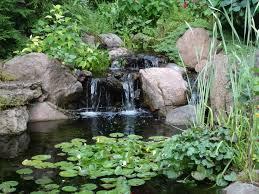 Aquascape Ponds Ndh Aquascapes Fayetteville Nc Backyard Pond Ndh Aquascapes