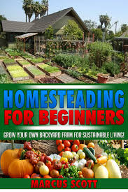buy mini farming for beginners how to build a self sustainable