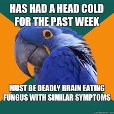 Head Cold Meme - cool have a cold meme has had a head cold for the past week must