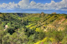 North Dakota forest images Free stock photo of hills landscape overlook at theodore roosevelt jpg