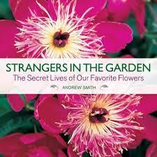 strangers flowers strangers in the garden the secret lives of our favorite flowers