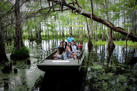 tours new orleans 72 hours in new orleans cajun encounters sw tour review