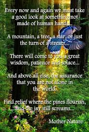 best 25 mother earth quotes ideas on pinterest earth quotes
