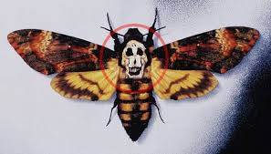 the skull on the silence of the lambs poster is actually