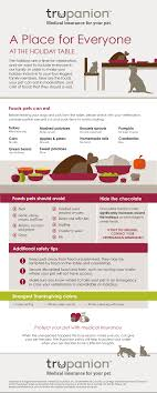 thanksgiving pet safety infographic the trupanion