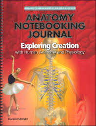 Anatomy And Physiology Games And Puzzles Crossword Human Anatomy And Physiology Notebooking Journal 023173 Details