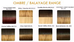 xtras hair extensions xtras hair extensions colour chart indian remy hair