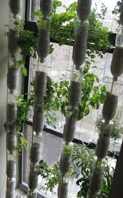 Vertical Gardening by Has Anyone Tried Vertical Gardening Gardening Forums