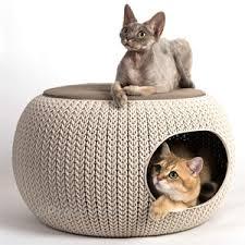 divanetti per gatti cucce per interno per cani brandine divanetti e ceste per il