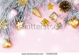 border fir branches conifer cones stock photo 726755719