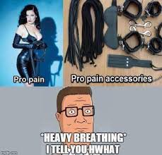 King Of The Hill Meme - i wonder if hank hill has a safe word dhtg
