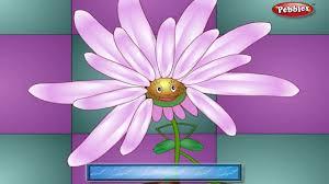 lavender rhyme flower rhymes for children nursery rhymes for