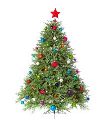 best christmas trees the best of christmas trees