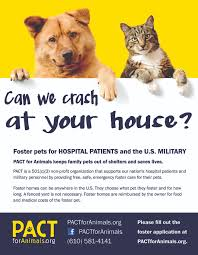 volunteer pact for animals