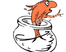 horton hatches the egg coloring pages the fish dr seuss wiki fandom powered by wikia