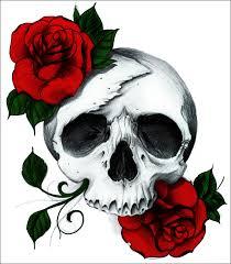 skull by a midza on deviantart