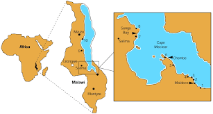 Malawi Map Schistosomiasis In Lake Malawi The Lancet