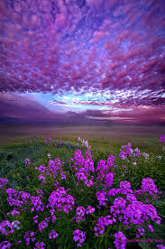 call to me and i will answer you u201d wisconsin horizons by phil koch