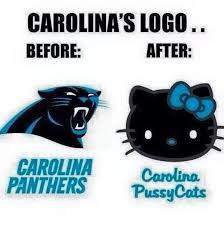 Carolina Panthers Memes - bitches just like their fake ass band wagon fans side note so
