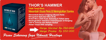 agen hammer of thor di bali 082226443731 cafeseni