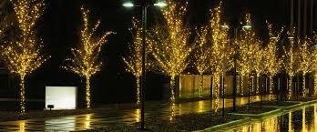 christmas light hanging service professional christmas decorators