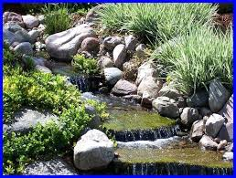 Backyard Pond Ideas With Waterfall Small Garden Waterfall Ponds Best 25 Small Backyard Ponds Ideas On