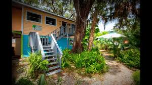 treehouse bungalow rent waterfront to scallop or swim with manatee