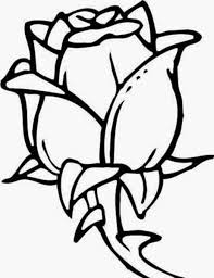 Flower Drawings Black And White - flowers drawings many flowers