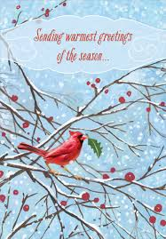 cardinal with green leaf card by designer greetings